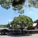 世界遺産登録をめざす宗像大社と沖ノ島の三女神信仰。